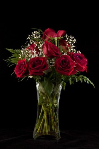 McEnaney-roses-closeup