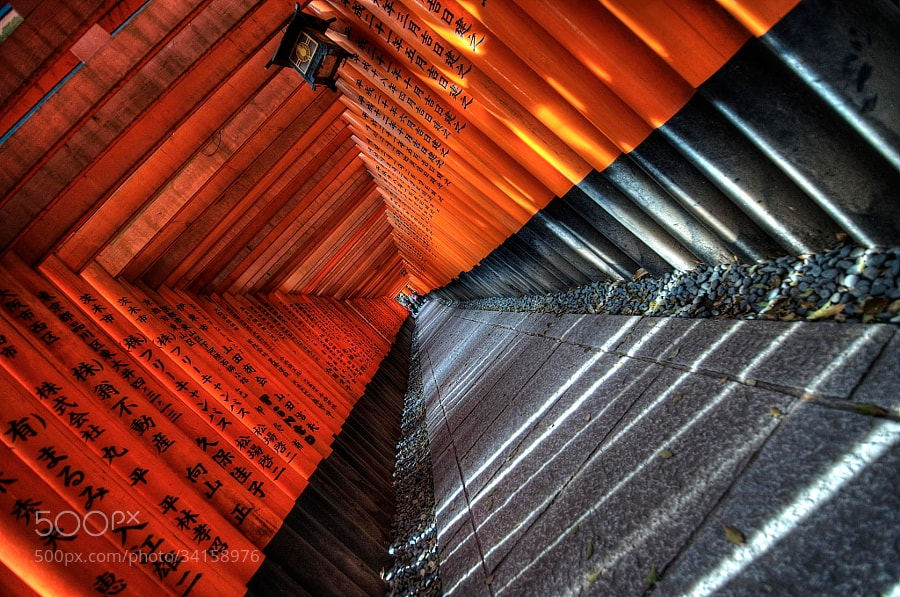 Photograph Fushimi Inari Shrine by César Asensio Marco on 500px