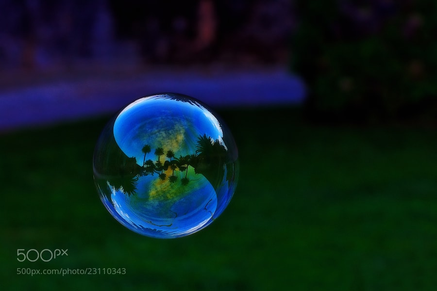 Photograph Garden Bubble by Ricardo  Alves on 500px