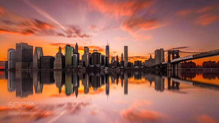 Photograph Concrete Jungle 2 by Kerim Hadzi on 500px