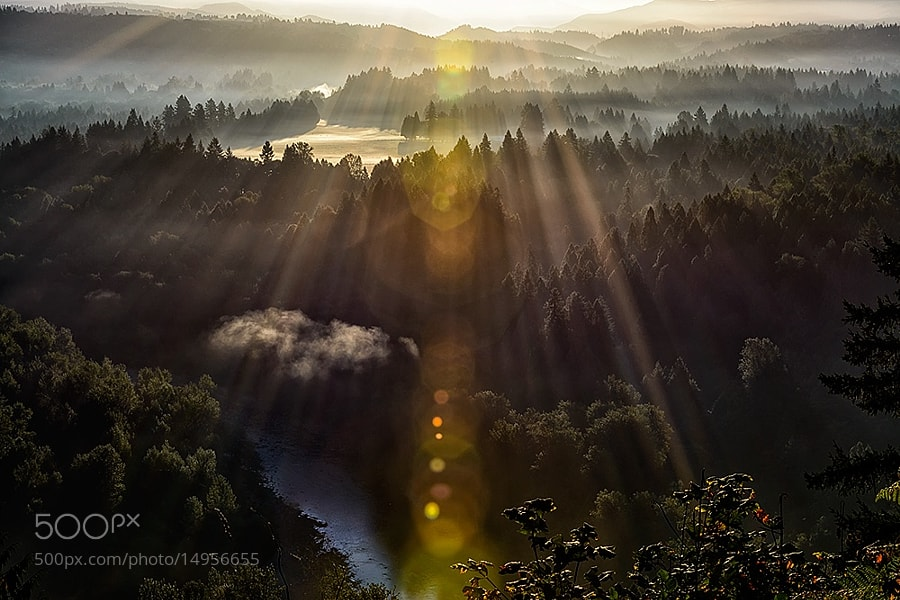 Photograph Let there be light!! by kathy towe on 500px