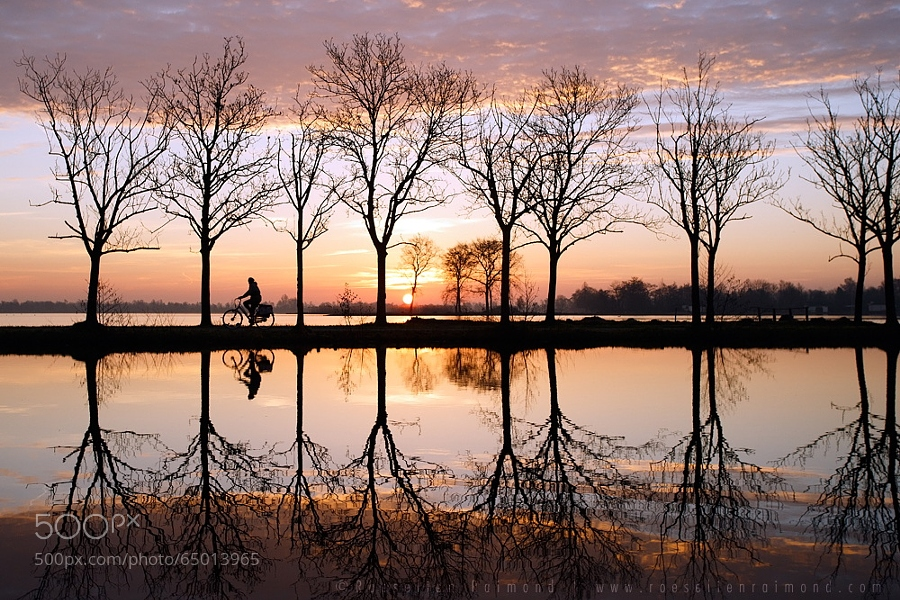 Photograph The Biking Dutchman by Roeselien Raimond on 500px