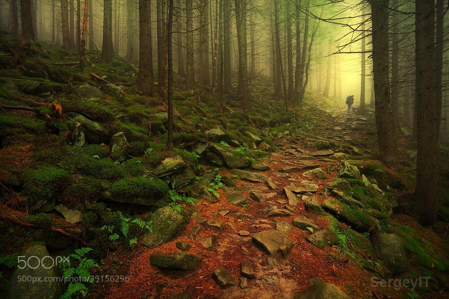 Photograph foggy mountain forest and man by Sergiy Trofimov on 500px