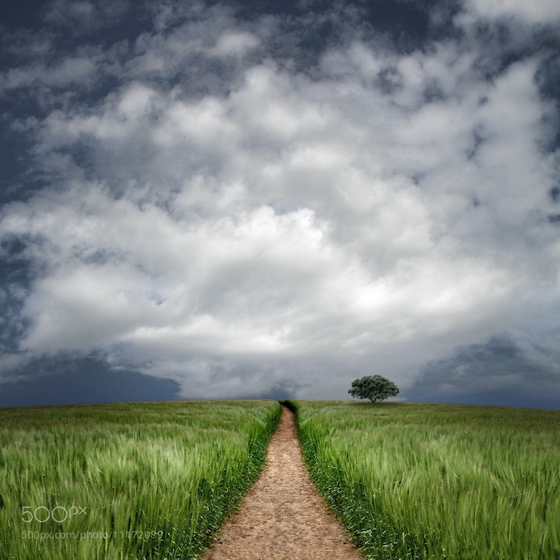 Photograph Along the Way by Carlos Gotay on 500px