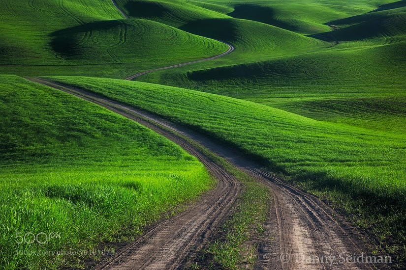 Photograph Winding Road by Danny Seidman on 500px