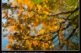 How to Create Abstract Images in Nature