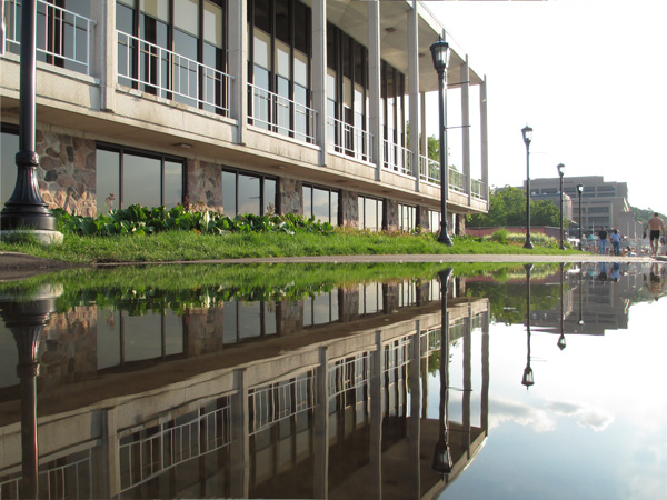 puddle, reflection, symmetry, how to