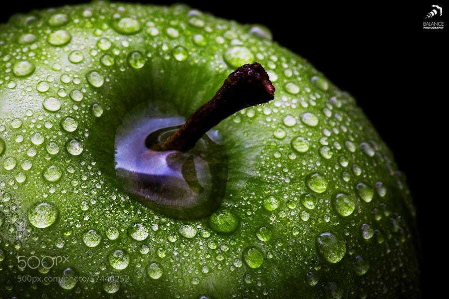 Photograph Green Apple by Alexander Zachen on 500px