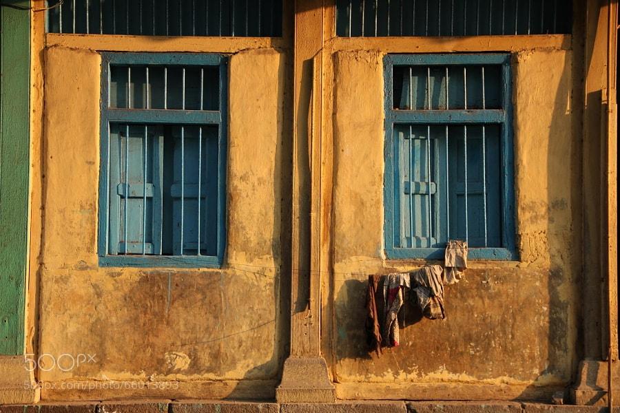 Photograph Yellow by Jayanta  Kshirsagar on 500px