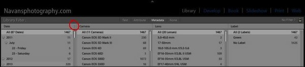 Lightroom FilterBar Metadata 04