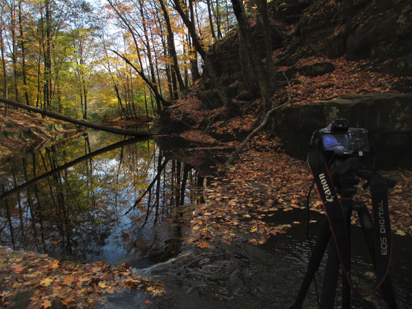 fall, autumn, photography, tripod, setup