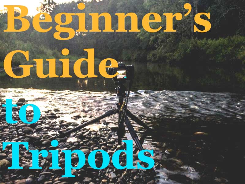 beginners-tripods