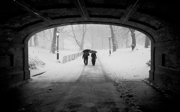 Couple in Snowstorm, Central Park