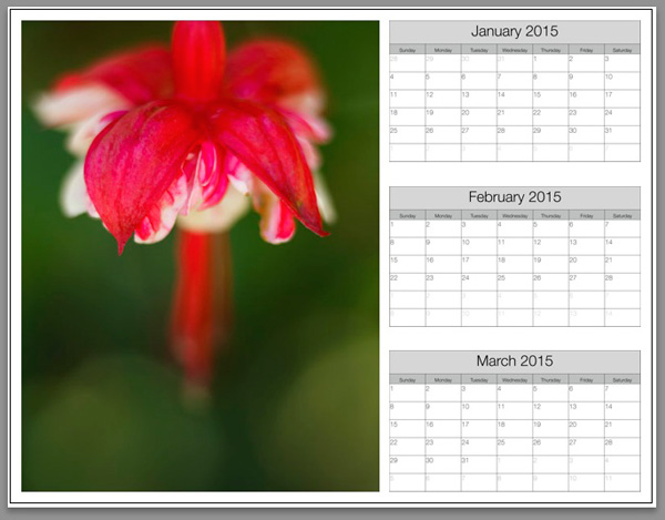 make a calendar 2015