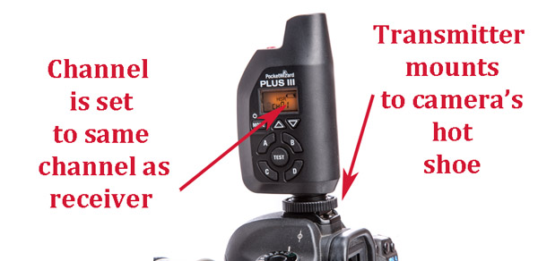 PocketWizard+camera 1