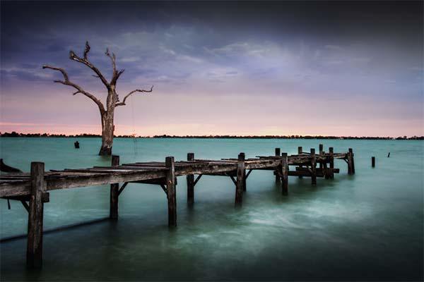 6 LeanneCole lakecharm back pier tree