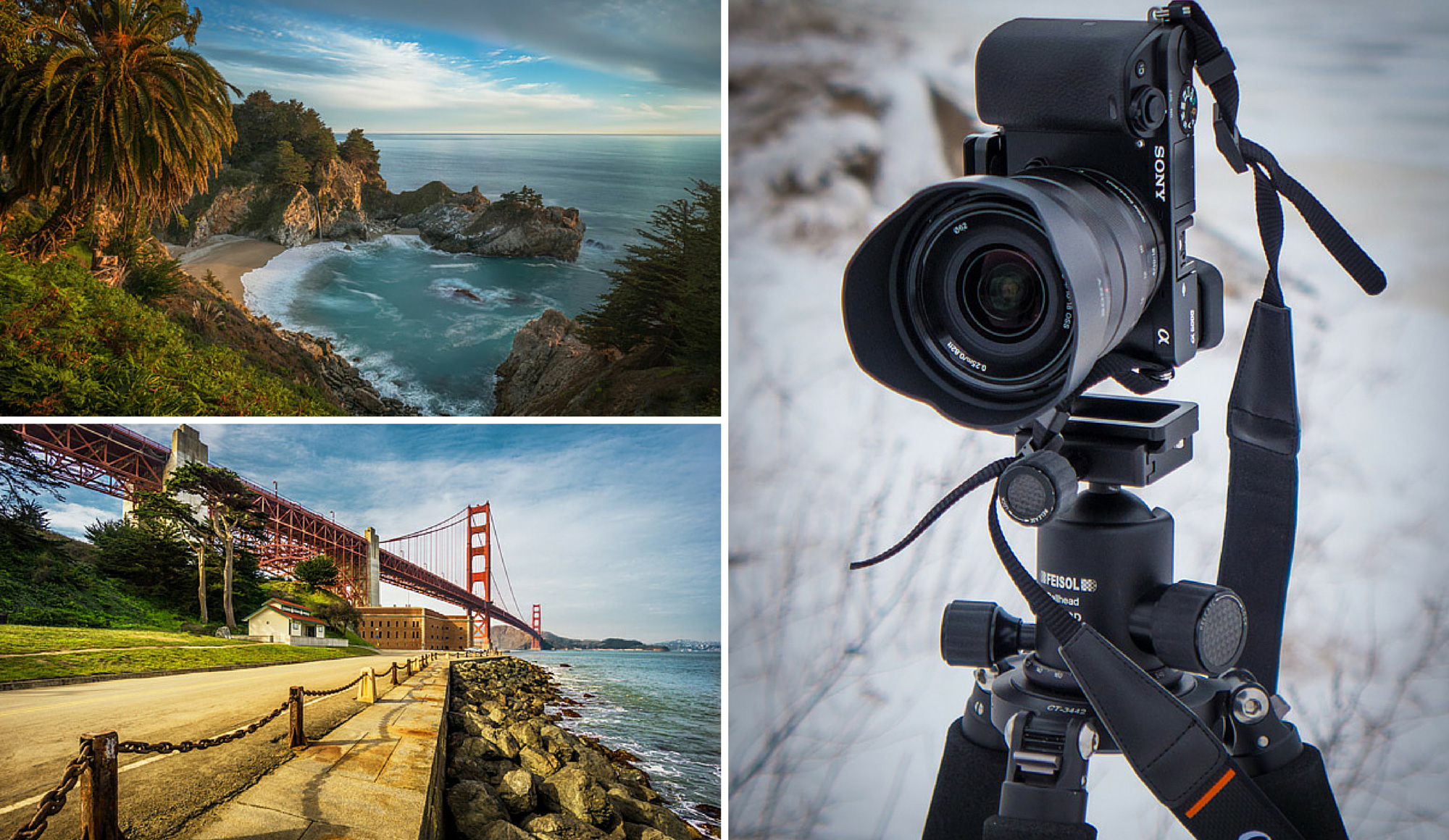 5 Lessons Learned Switching from DSLR to Mirrorless for ...