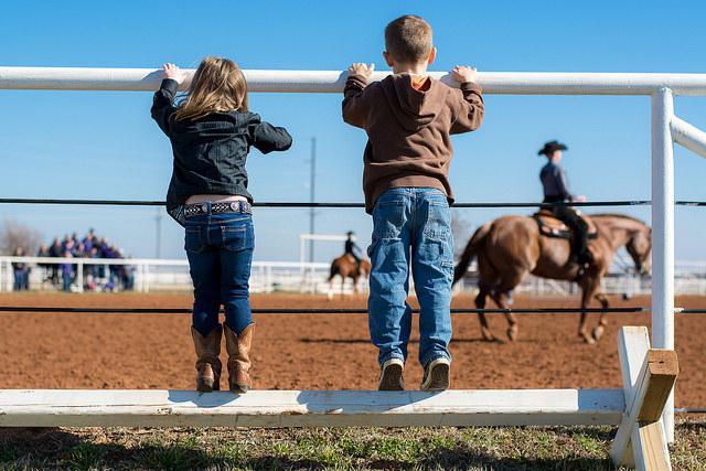 kids-horses