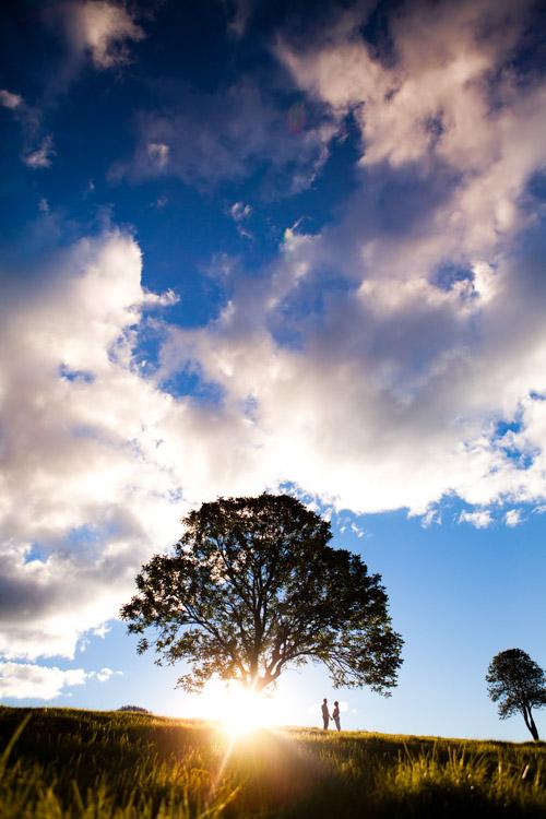 retrato de silhueta fotografando pessoas perto de uma árvore