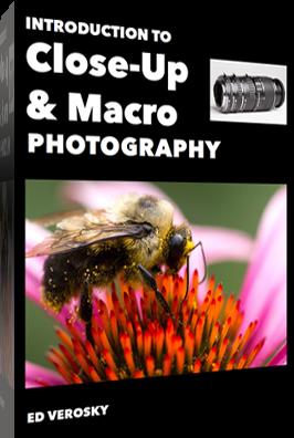macro-cover