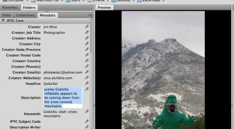How to Add Metadata to Your Images in Photoshop