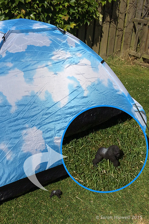 Gorilla-scale-to-tent