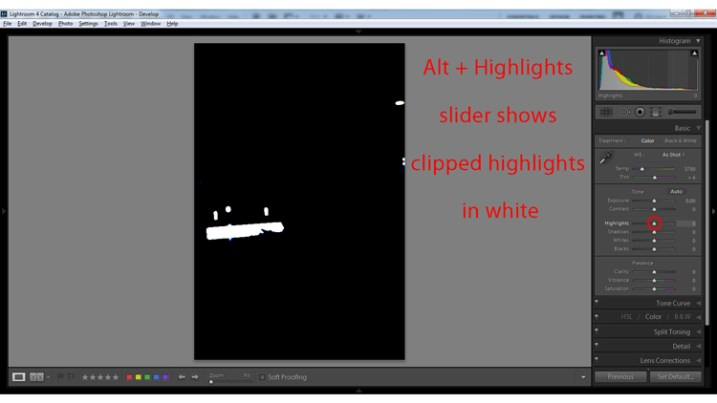 Alt + clicking on the Highlights slider shows clipped highlights