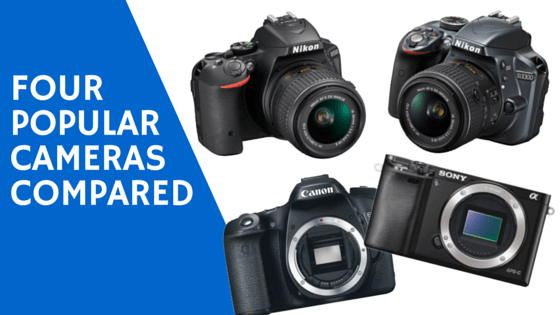 Camera Showdown: the Nikon D5500 and D3300, Canon 70D and Sony a6000 Compared