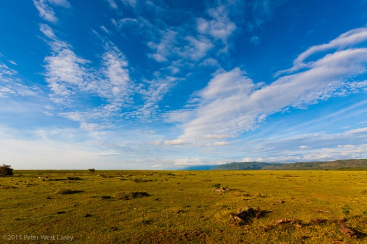 The wide open spaces of Serengeti National Park beckon, Tanzania, Africa