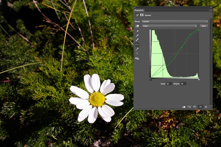 flower-green-channel-S-curve