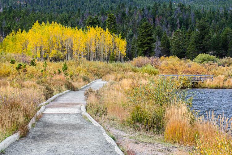Two image focus stack of Lily Lake near Estes Park, Colorado.