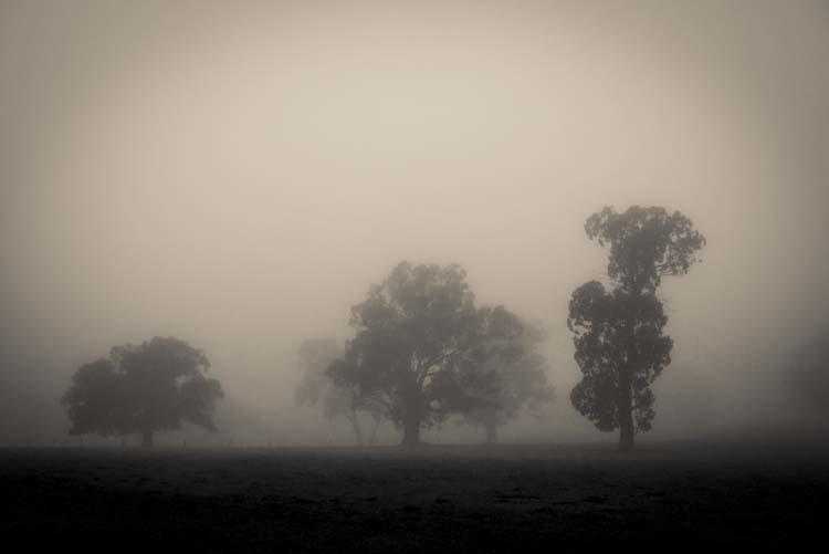 cole-landscape-photography-seasons-0012