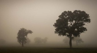 Landscape Photography from the Side of the Road