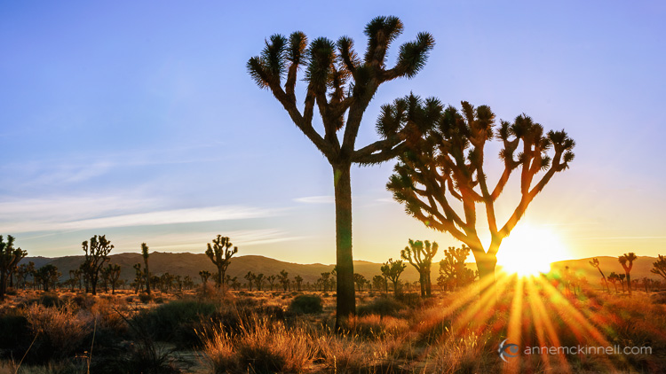 6 Tips for Creating More Captivating Landscape Photographs