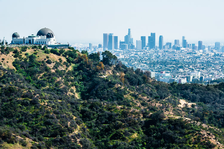 The Los Angeles urban landscape