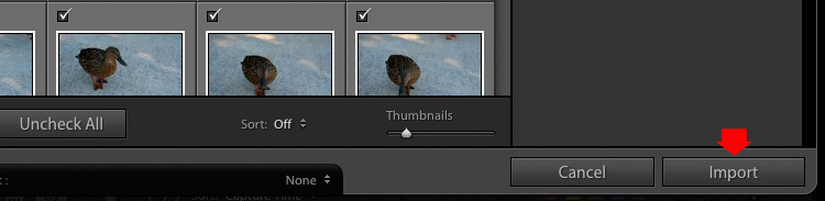 Importing photos into Lightroom