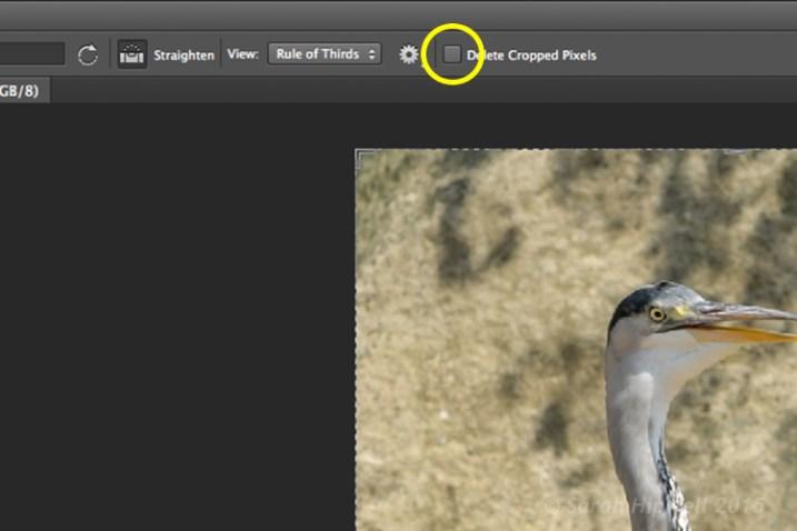 Delete-cropped-pixels