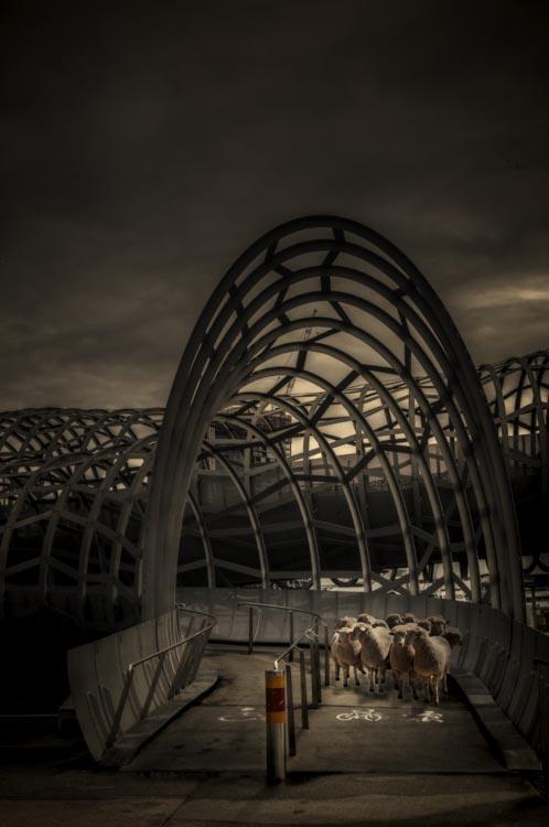 leanne-cole-conceptual-photography-043