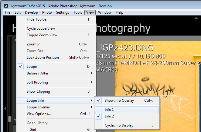 How to turn the Loupe Info Overlay on and off