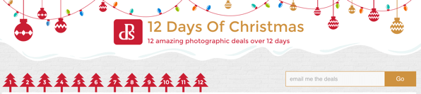 12 deals christmas dps