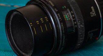 Writer's Favorite Lens – Canon 50mm f/2.5 Compact Macro
