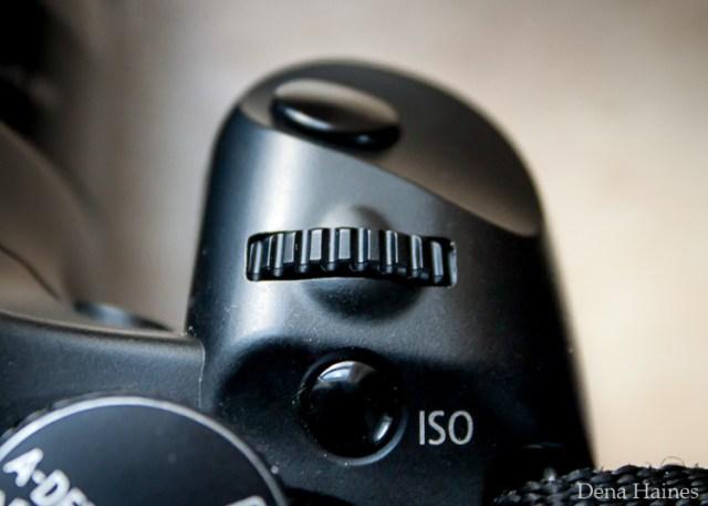 Main dial canon