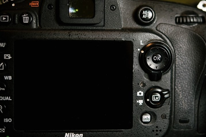 5 Troubleshooting Steps for When Your Nikon's Autofocus
