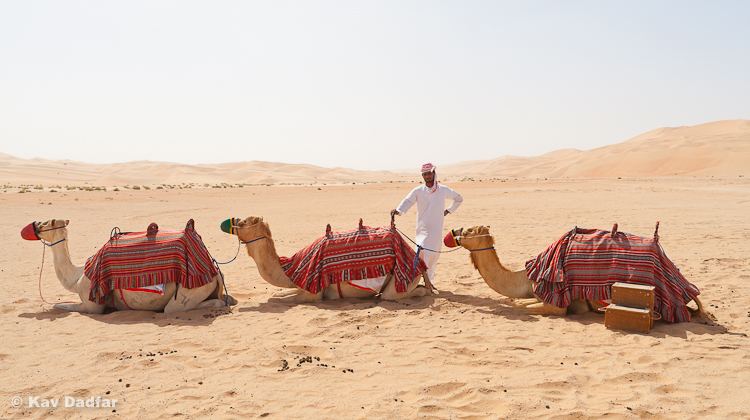 A local camel handler in Empty Quarter in Liwa Oasis