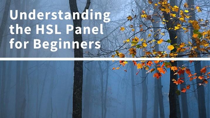 Understanding the HSLPanel for Beginners