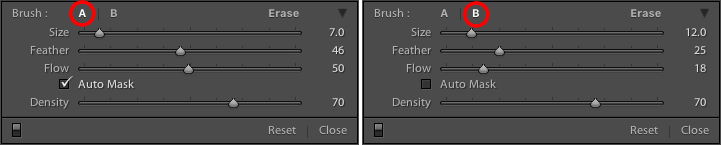 5 Tips for Using the Lightroom Adjustment Brush Tool