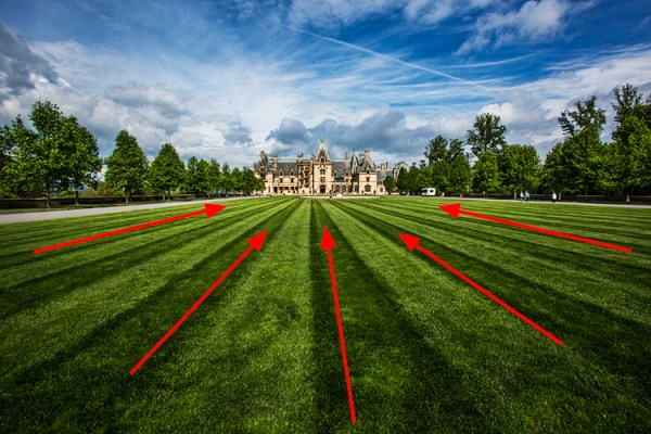 How to Use Leading Lines Effectively in Landscape Photography