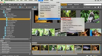 How to do Bulk Resize and Edit in Photoshop
