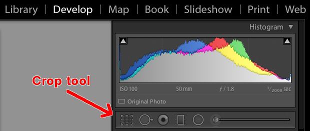 beginners-guide-lightroom-crop-tool