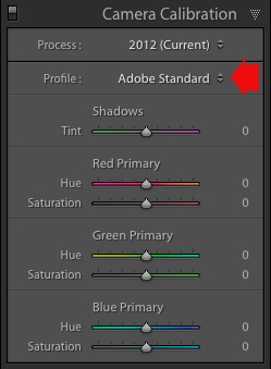 Lightroom Develop module